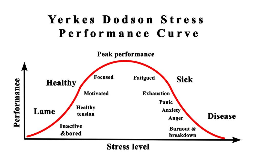 Yerkes-Dodson-stress-curve